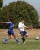 Bayside Soccer : 3 galleries with 408 photos